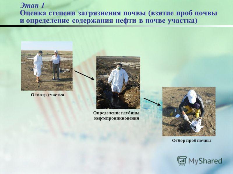 Этап 1 Оценка степени загрязнения почвы (взятие проб почвы и определение содержания нефти в почве участка) Осмотр участка Отбор проб почвы Определение глубины нефтепроникновения