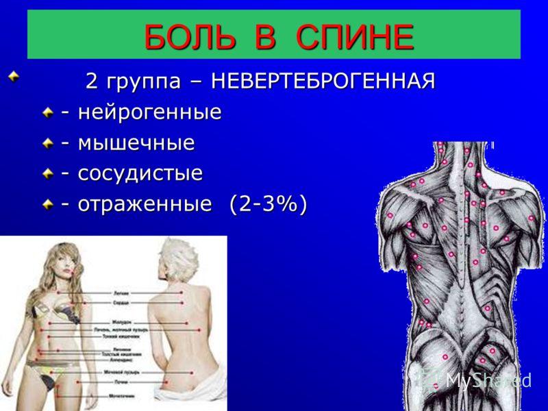 БОЛЬ В СПИНЕ БОЛЬ В СПИНЕ 2 группа – НЕВЕРТЕБРОГЕННАЯ 2 группа – НЕВЕРТЕБРОГЕННАЯ - нейрогенные - мышечные - сосудистые - отраженные (2-3%)