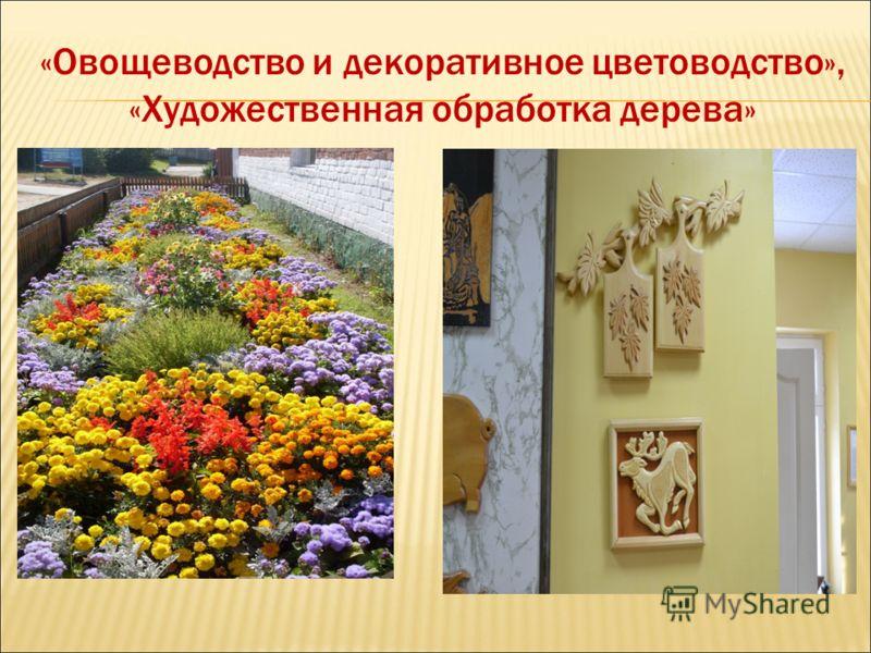 «Овощеводство и декоративное цветоводство», «Художественная обработка дерева»