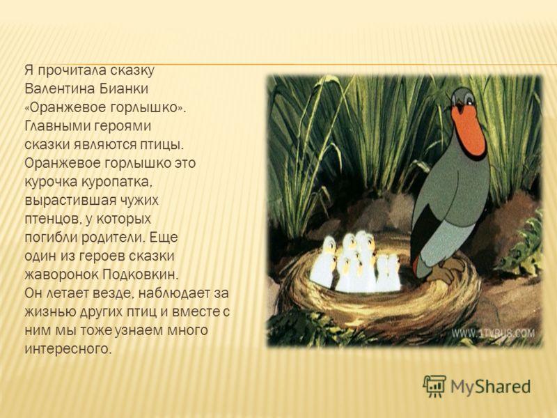 Я прочитала сказку Валентина Бианки «Оранжевое горлышко». Главными героями сказки являются птицы. Оранжевое горлышко это курочка куропатка, вырастившая чужих птенцов, у которых погибли родители. Еще один из героев сказки жаворонок Подковкин. Он летае