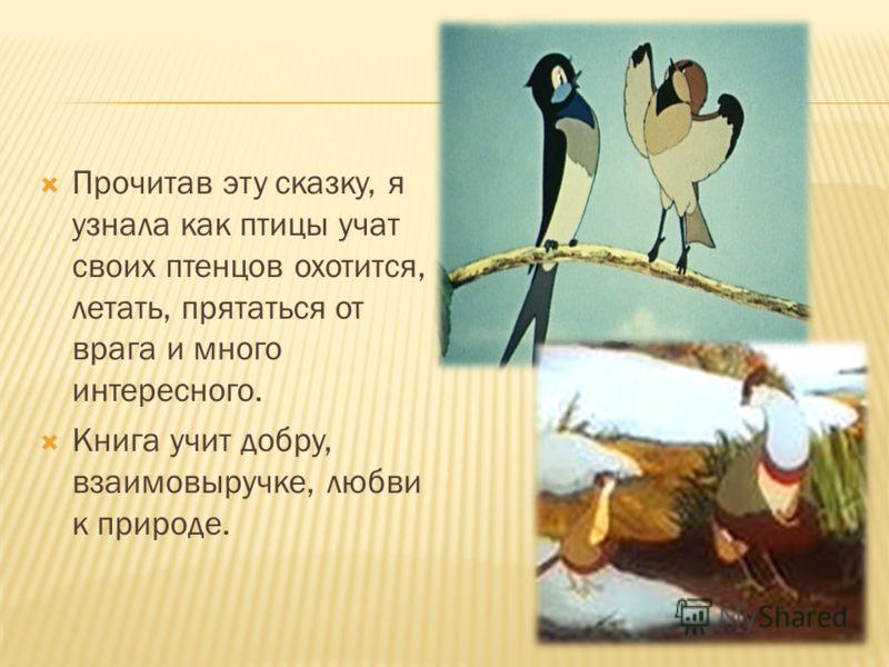 Прочитав эту сказку, я узнала как птицы учат своих птенцов охотится, летать, прятаться от врага и много интересного. Книга учит добру, взаимовыручке, любви к природе.