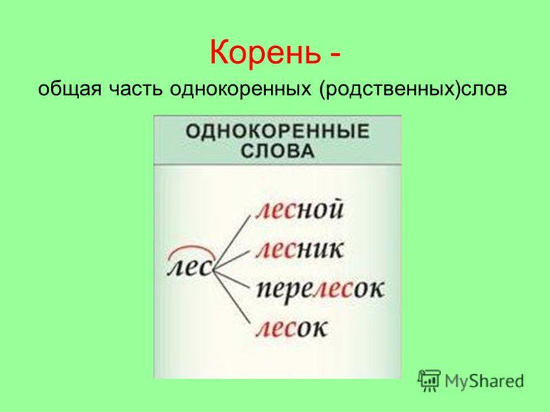 Корень - общая часть однокоренных (родственных)слов