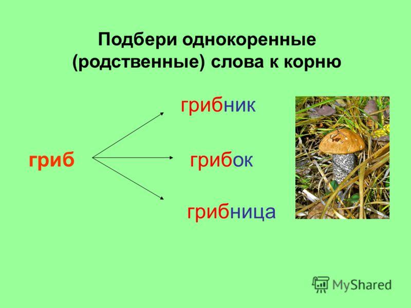 грибница грибок грибник гриб Подбери однокоренные (родственные) слова к корню