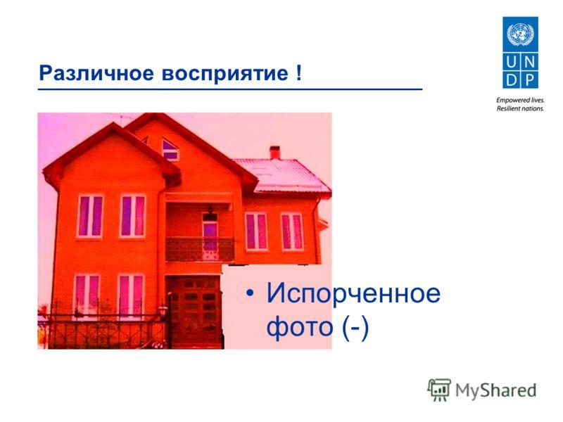 Различное восприятие ! Испорченное фото (-)