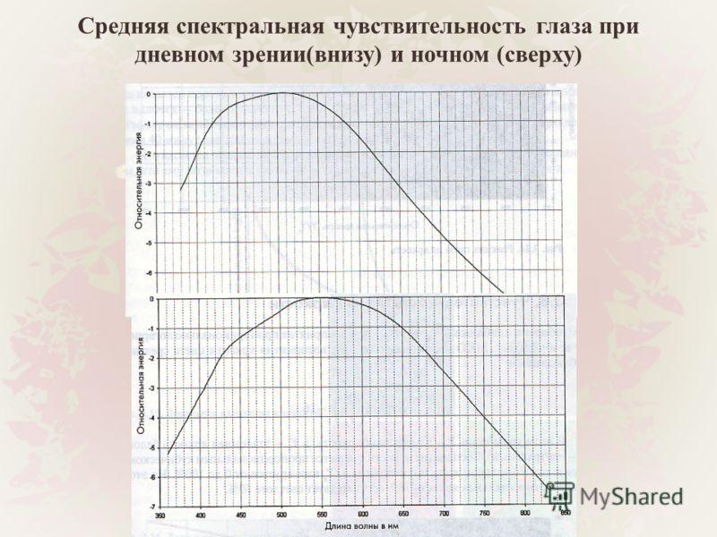 Средняя спектральная чувствительность глаза при дневном зрении(внизу) и ночном (сверху)
