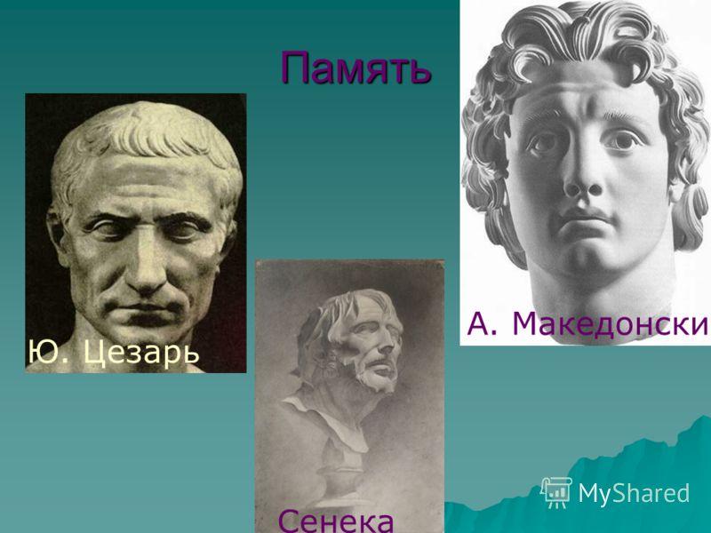 Память Ю. Цезарь А. Македонский Сенека