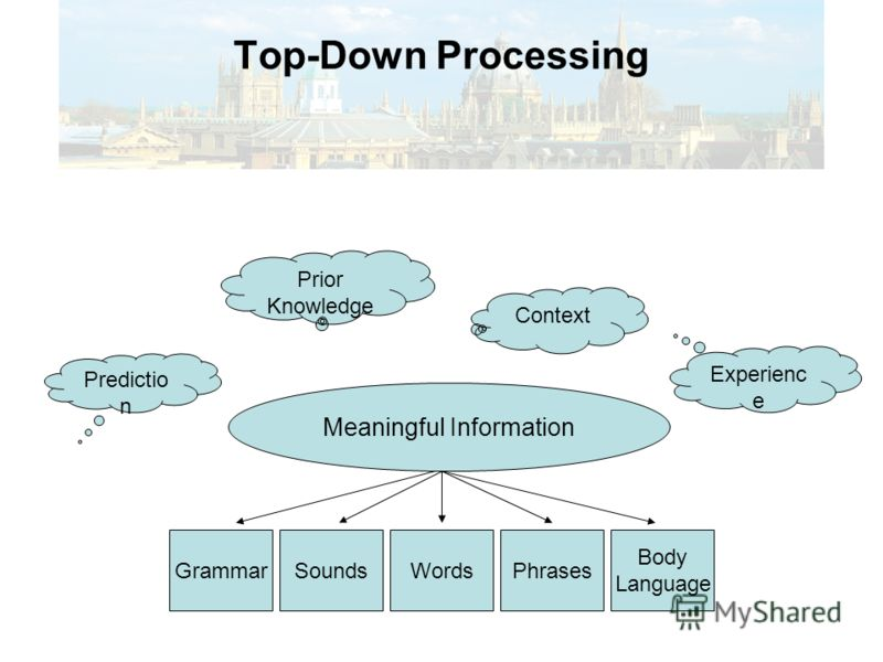Восприятие от общего к частному (в режиме TOP-DOWN) Фоновые знания общие знания по теме типичная схема события знакомство с конкретной ситуацией Смысл сообщения