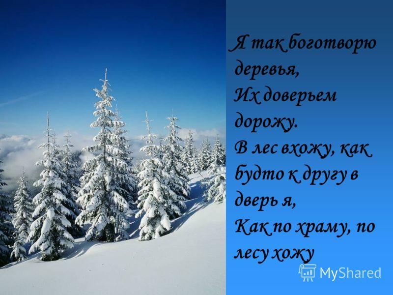 Я так боготворю деревья, Их доверьем дорожу. В лес вхожу, как будто к другу в дверь я, Как по храму, по лесу хожу