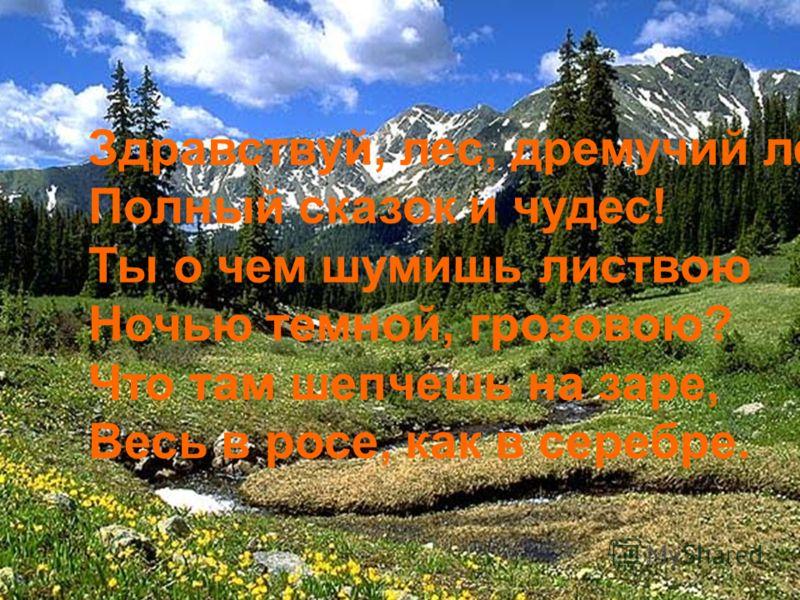 Здравствуй, лес, дремучий лес, Полный сказок и чудес! Ты о чем шумишь листвою Ночью темной, грозовою? Что там шепчешь на заре, Весь в росе, как в серебре.