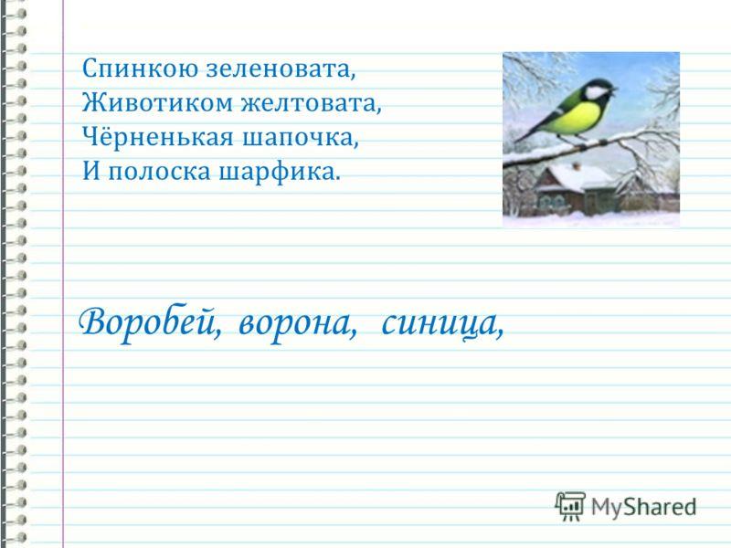 ворона, Спинкою зеленовата, Животиком желтовата, Чёрненькая шапочка, И полоска шарфика. синица,