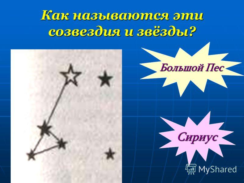 Как называются эти созвездия и звёзды? Большой Пес Сириус