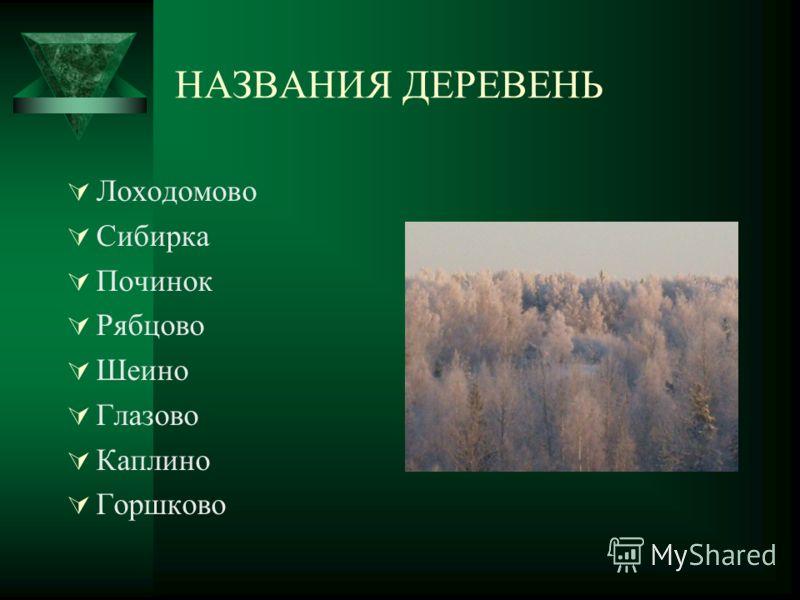 НАЗВАНИЯ ДЕРЕВЕНЬ Лоходомово Сибирка Починок Рябцово Шеино Глазово Каплино Горшково