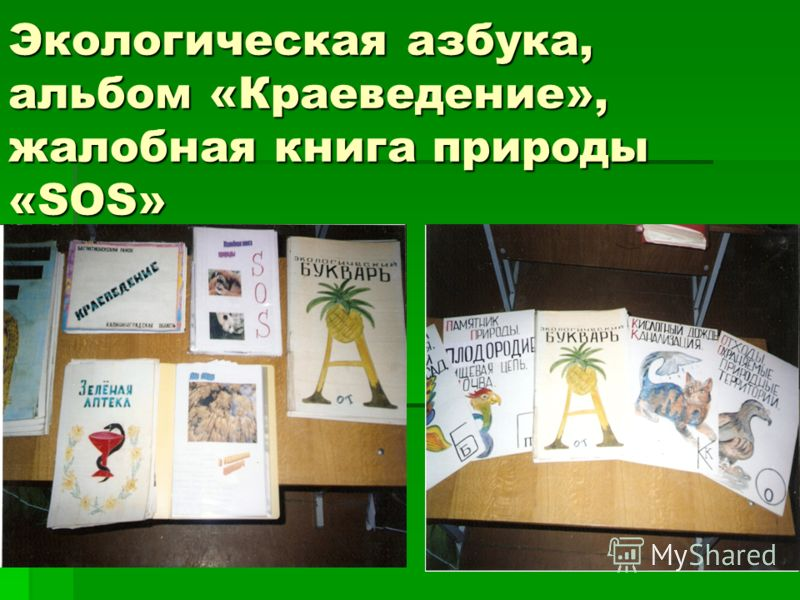 Экологическая азбука, альбом «Краеведение», жалобная книга природы «SOS»
