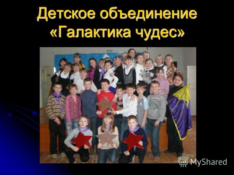 Муниципальное образовательное учреждение основная общеобразовательная школа 12 г. Городца Нижегородской области представляет