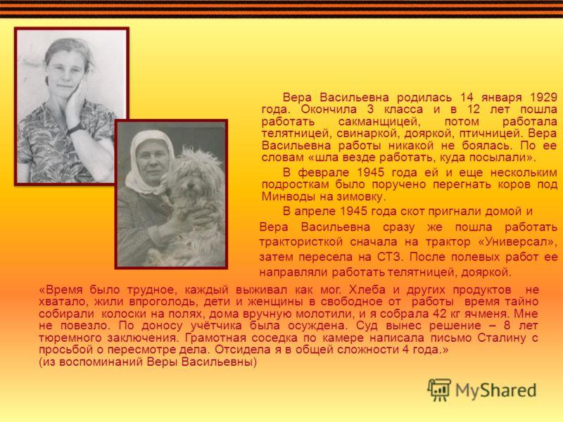 Вера Васильевна родилась 14 января 1929 года. Окончила 3 класса и в 12 лет пошла работать сакманщицей, потом работала телятницей, свинаркой, дояркой, птичницей. Вера Васильевна работы никакой не боялась. По ее словам «шла везде работать, куда посылал