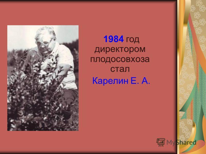 1984 год директором плодосовхоза стал Карелин Е. А.
