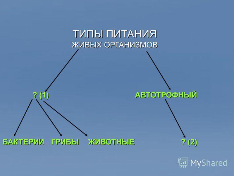 ТИПЫ ПИТАНИЯ ЖИВЫХ ОРГАНИЗМОВ ? (1) АВТОТРОФНЫЙ БАКТЕРИИ ГРИБЫ ЖИВОТНЫЕ ? (2)