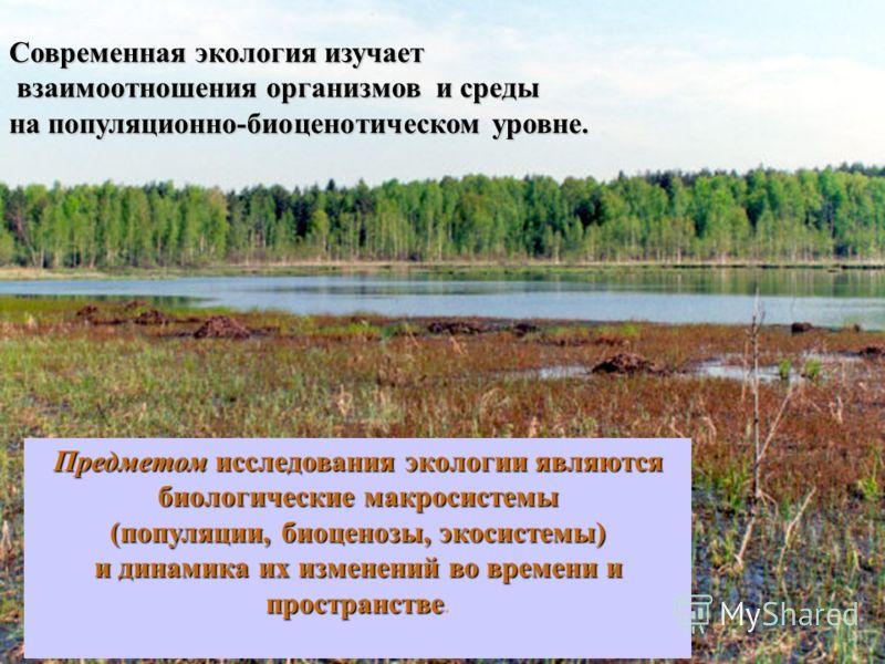 Современная экология изучает взаимоотношения организмов и среды взаимоотношения организмов и среды на популяционно-биоценотическом уровне. Предметом исследования экологии являются биологические макросистемы (популяции, биоценозы, экосистемы) и динами
