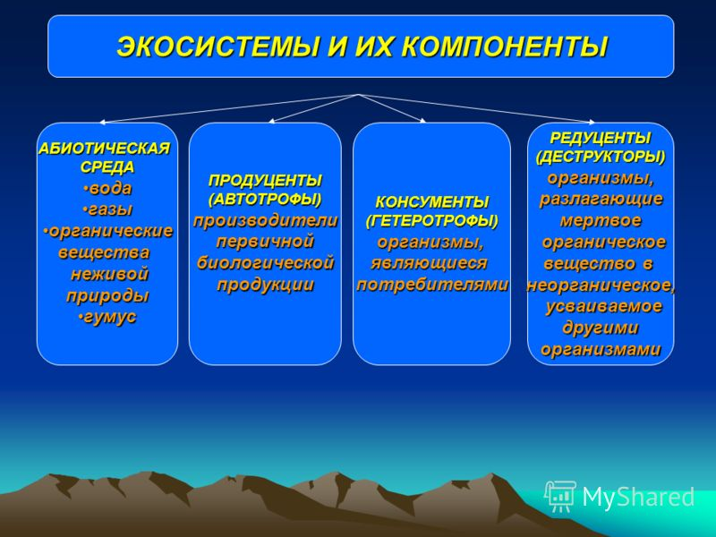 ЭКОСИСТЕМЫ И ИХ КОМПОНЕНТЫ АБИОТИЧЕСКАЯСРЕДА водавода газыгазы органическиеорганическиевещества неживой неживойприроды гумусгумусКОНСУМЕНТЫ(ГЕТЕРОТРОФЫ)организмы,являющиесяпотребителямиРЕДУЦЕНТЫ(ДЕСТРУКТОРЫ)организмы,разлагающиемертвое органическое о