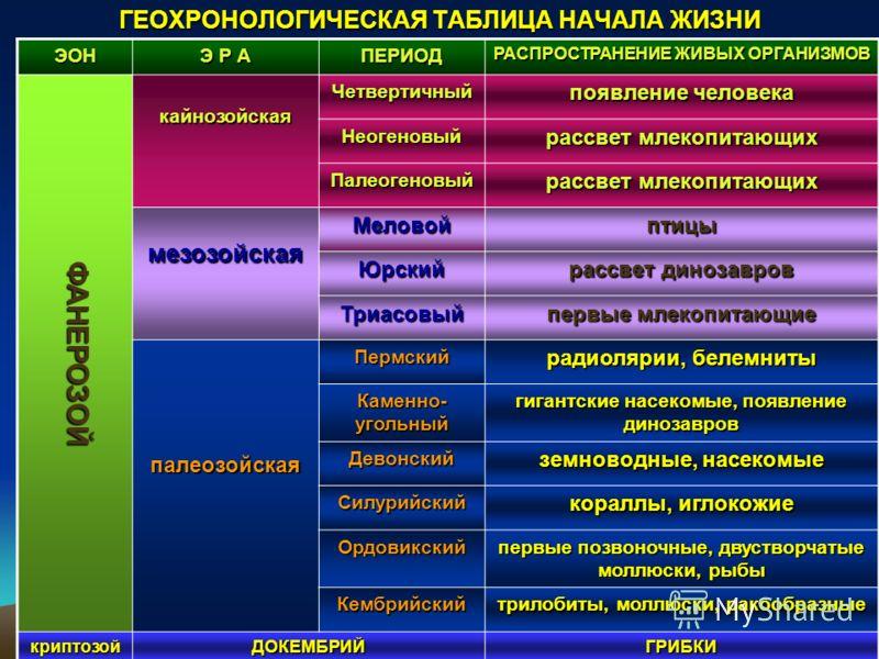ГЕОХРОНОЛОГИЧЕСКАЯ ТАБЛИЦА НАЧАЛА ЖИЗНИ ЭОН Э Р А ПЕРИОД РАСПРОСТРАНЕНИЕ ЖИВЫХ ОРГАНИЗМОВ ФАНЕРОЗОЙ кайнозойскаяЧетвертичный появление человека Неогеновый рассвет млекопитающих Палеогеновый мезозойскаяМеловойптицы Юрский рассвет динозавров Триасовый