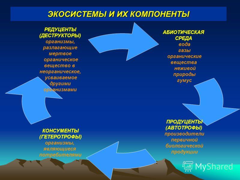 ЭКОСИСТЕМЫ И ИХ КОМПОНЕНТЫ АБИОТИЧЕСКАЯ СРЕДА вода газы органические вещества неживой природы гумус ПРОДУЦЕНТЫ (АВТОТРОФЫ) производители первичной биологической продукции КОНСУМЕНТЫ (ГЕТЕРОТРОФЫ) организмы, являющиеся потребителями РЕДУЦЕНТЫ (ДЕСТРУК