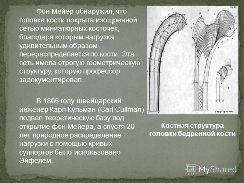 Фон Мейер обнаружил, что головка кости покрыта изощренной сетью миниатюрных косточек, благодаря которым нагрузка удивительным образом перераспределяется по кости. Эта сеть имела строгую геометрическую структуру, которую профессор задокументировал. В