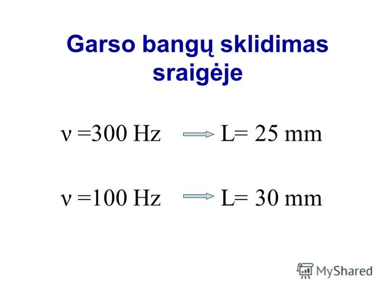Garso bangų sklidimas sraigėje ν =300 Hz L= 25 mm ν =100 Hz L= 30 mm