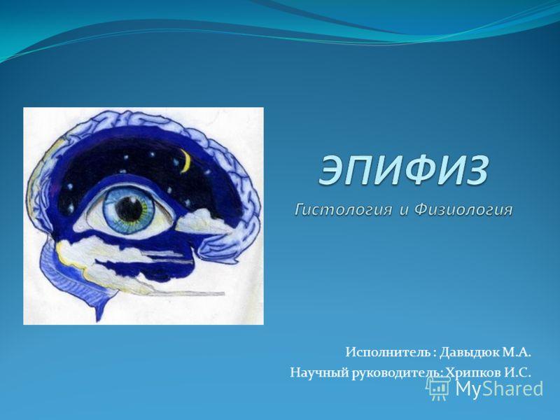 Исполнитель : Давыдюк М.А. Научный руководитель: Хрипков И.С.