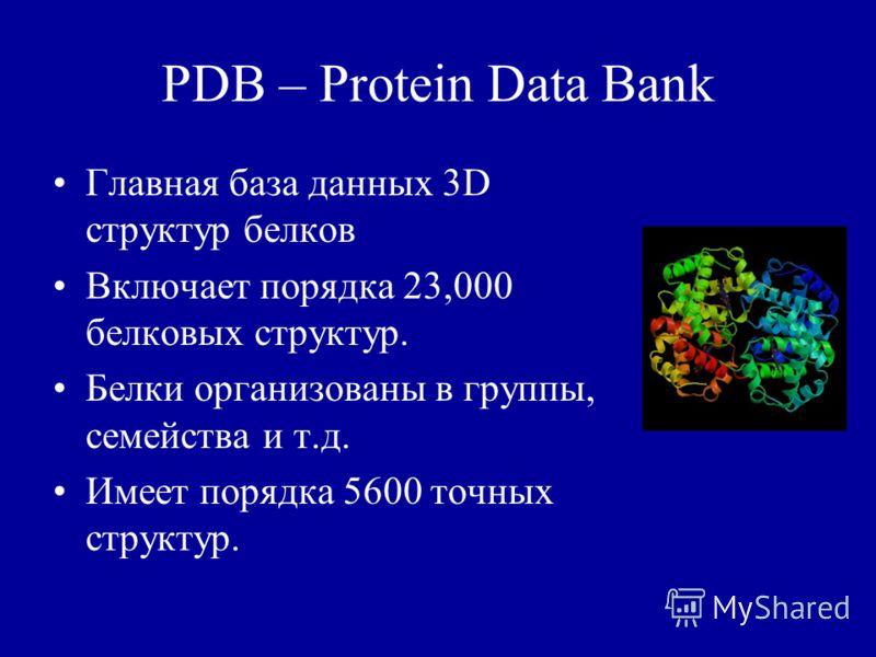 PDB – Protein Data Bank Главная база данных 3D структур белков Включает порядка 23,000 белковых структур. Белки организованы в группы, семейства и т.д. Имеет порядка 5600 точных структур.