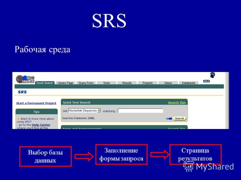 SRS Рабочая среда Выбор базы данных Заполнение формы запроса Страница результатов