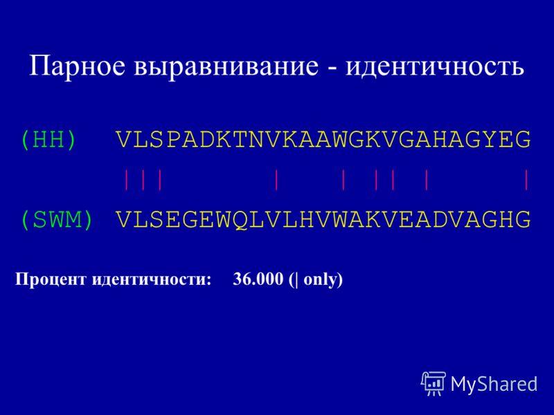 Парное выравнивание - идентичность (HH) VLSPADKTNVKAAWGKVGAHAGYEG ||| | | || | | (SWM) VLSEGEWQLVLHVWAKVEADVAGHG Процент идентичности: 36.000 (| only)