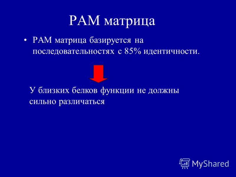 PAM матрица PAM матрица базируется на последовательностях с 85% идентичности. У близких белков функции не должны сильно различаться