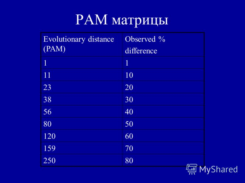 PAM матрицы Observed % difference Evolutionary distance (PAM) 11 1011 2023 3038 4056 5080 60120 70159 80250
