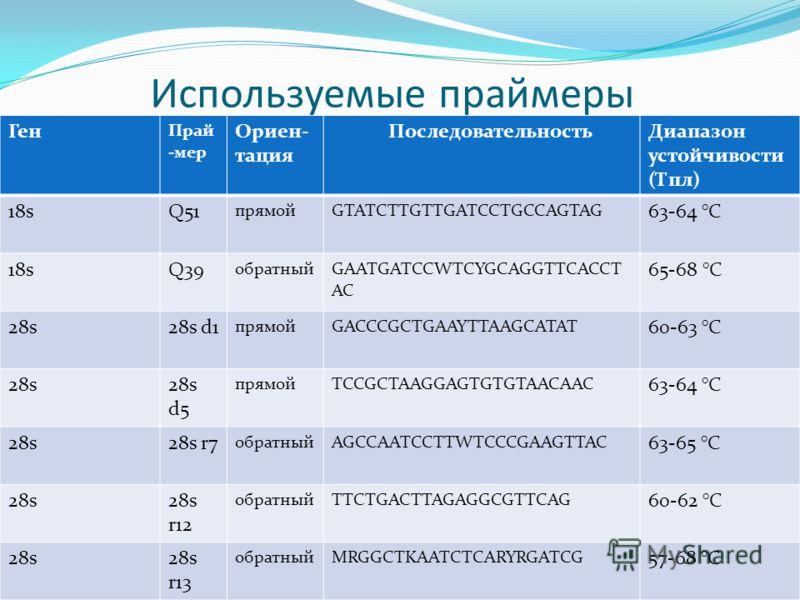 Используемые праймеры Ген Прай -мер Ориен- тация ПоследовательностьДиапазон устойчивости (Тпл) 18sQ51 прямойGTATCTTGTTGATCCTGCCAGTAG 63-64 °C 18sQ39 обратныйGAATGATCCWTCYGCAGGTTCACCT AC 65-68 °C 28s28s d1 прямойGACCCGCTGAAYTTAAGCATAT 60-63 °C 28s28s