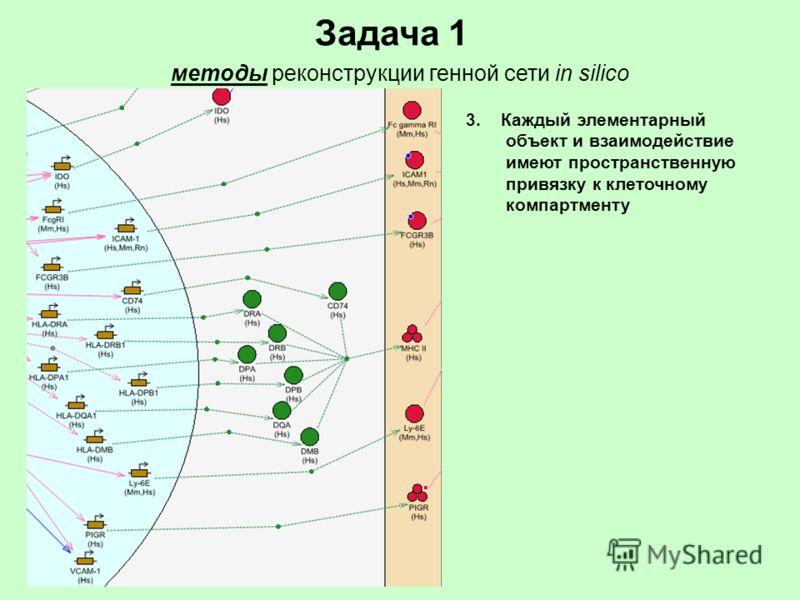 Задача 1 методы реконструкции генной сети in silico 3. Каждый элементарный объект и взаимодействие имеют пространственную привязку к клеточному компартменту