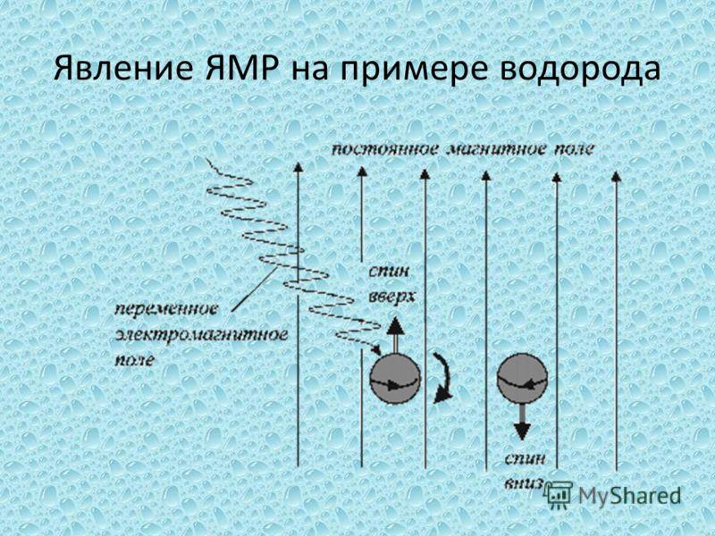 Явление ЯМР на примере водорода