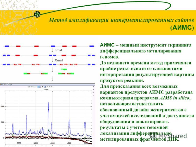 Метод амплификации интерметилированных сайтов ( АИМС ) АИМС – мощный инструмент скрининга дифференциального метилирования геномов. До недавнего времени метод применялся крайне редко всвязи со сложностями интерпретации результирующей картины продуктов