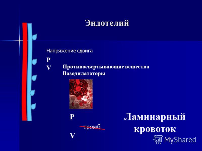 Эндотелий Ламинарный кровоток PVPV Противосвертывающие вещества Вазодилататоры P тромб V Напряжение сдвига
