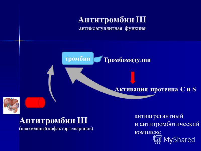антикоагулянтная функция Антитромбин III антикоагулянтная функция тромбин Тромбомодулин Активация протеина C и S антиагрегантный и антитромботический комплекс Антитромбин III (плазменный кофактор гепаринов)