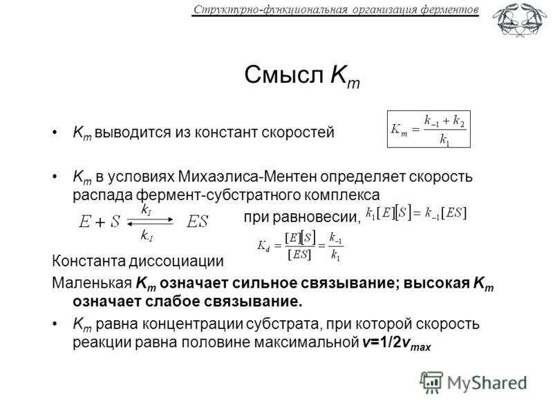 Структурно-функциональная организация ферментов Смысл K m K m выводится из констант скоростей K m в условиях Михаэлиса-Ментен определяет скорость распада фермент-субстратного комплекса при равновесии, Константа диссоциации Маленькая K m означает силь