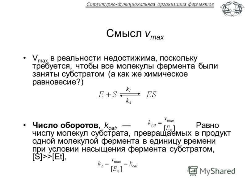 Структурно-функциональная организация ферментов Смысл v max V max в реальности недостижима, поскольку требуется, чтобы все молекулы фермента были заняты субстратом (а как же химическое равновесие?) Число оборотов, k cat, Равно числу молекул субстрата