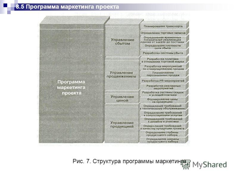 Рис. 7. Структура программы маркетинга 8.5 Программа маркетинга проекта