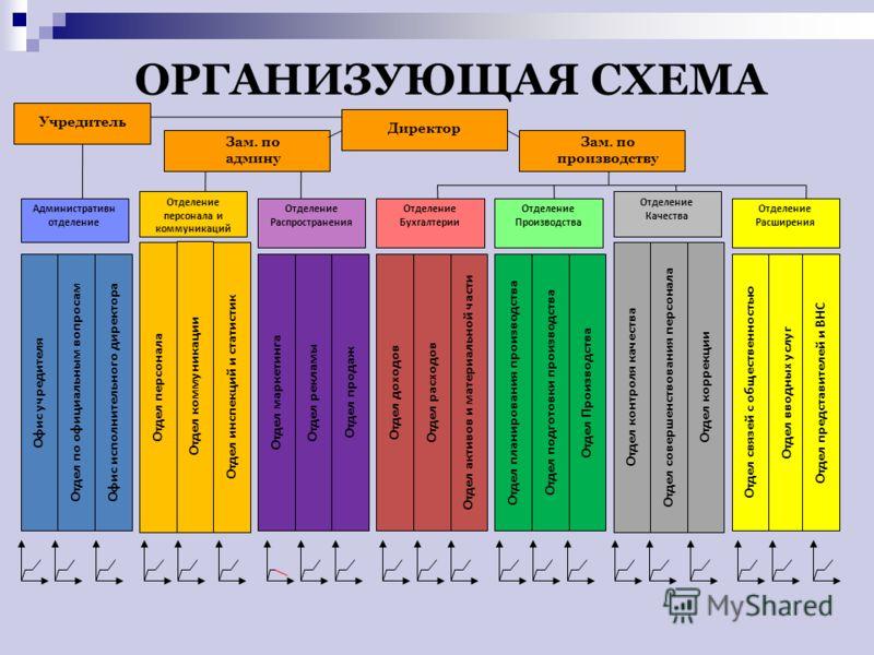 ОРГАНИЗУЮЩАЯ СХЕМА Директор