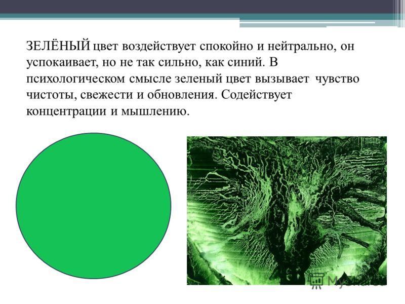 ЗЕЛЁНЫЙ цвет воздействует спокойно и нейтрально, он успокаивает, но не так сильно, как синий. В психологическом смысле зеленый цвет вызывает чувство чистоты, свежести и обновления. Содействует концентрации и мышлению.