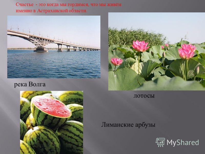 река Волга лотосы Лиманские арбузы Счастье - это когда мы гордимся, что мы живём именно в Астраханской области.
