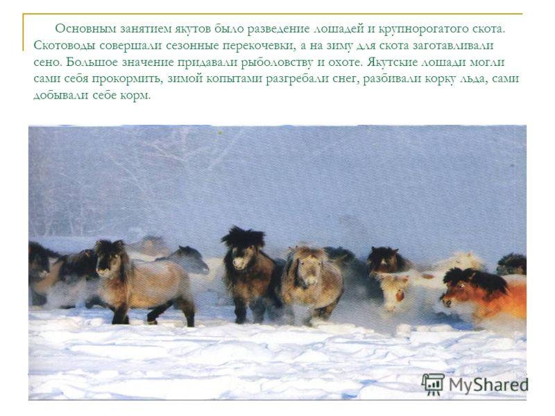 Основным занятием якутов было разведение лошадей и крупнорогатого скота. Скотоводы совершали сезонные перекочевки, а на зиму для скота заготавливали сено. Большое значение придавали рыболовству и охоте. Якутские лошади могли сами себя прокормить, зим