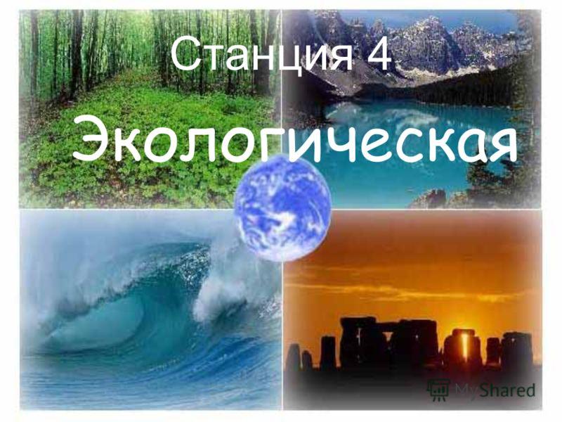 Станция 4 Экологическая