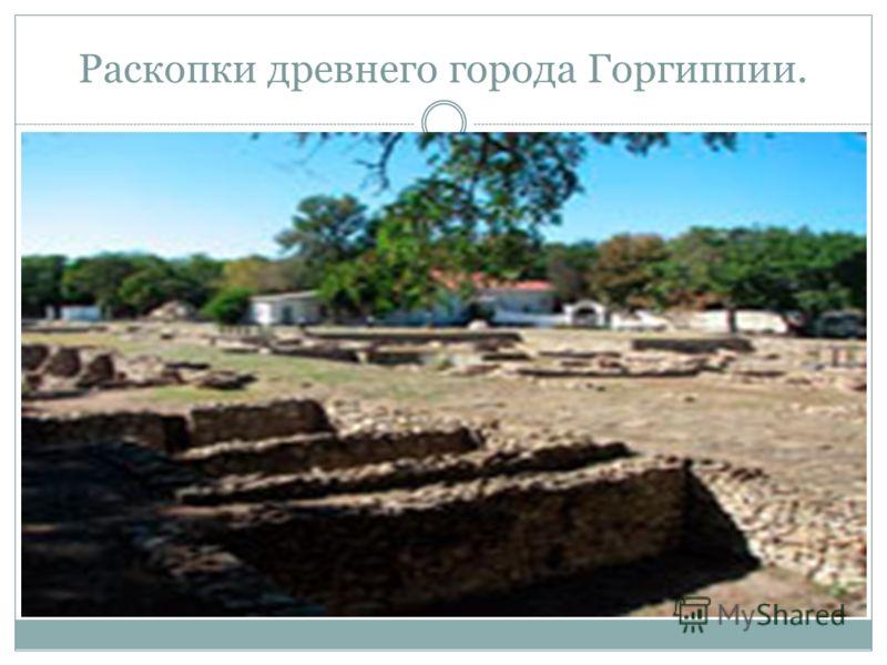 Раскопки древнего города Горгиппии.