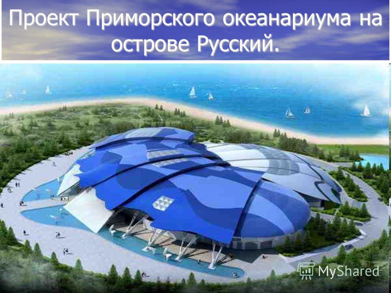 Проект Приморского океанариума на острове Русский.