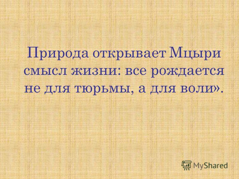 Природа открывает Мцыри смысл жизни: все рождается не для тюрьмы, а для воли».